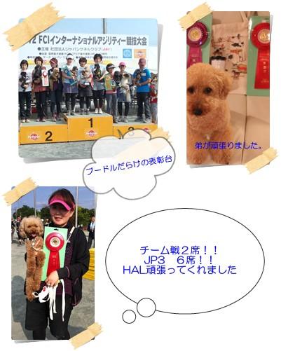 2012-6-3-2.jpg