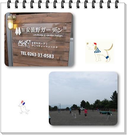 2012-7-1-1.jpg