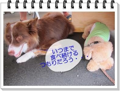 2012-7-15-11.jpg