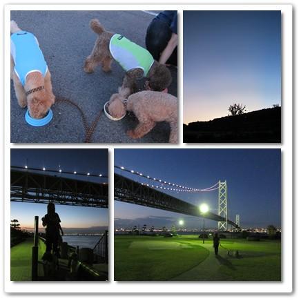 2012-8-16-14.jpg