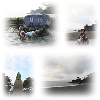 2012-8-16-4.jpg