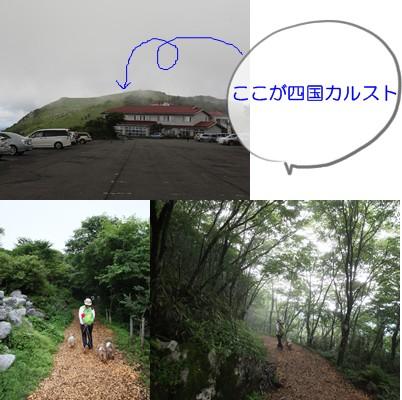 2012-8-16-5.jpg