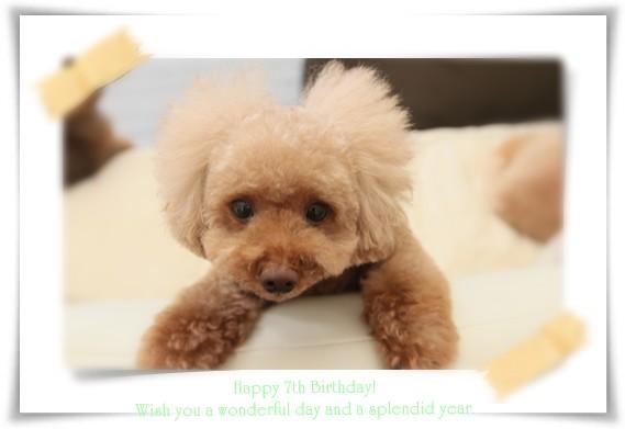 7歳のお誕生日おめでとう~☆