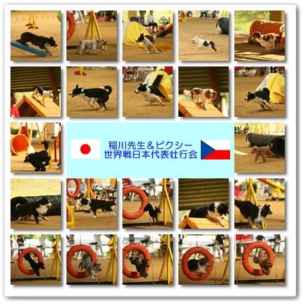 2012-9-10-1.jpg