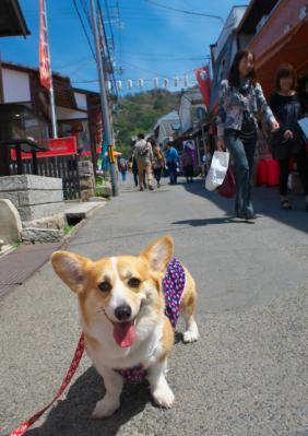 ginnkakuji_1000.jpg