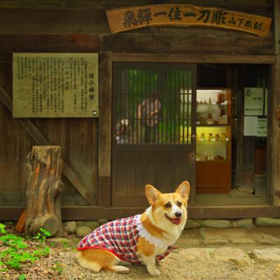hidanosato_1022.jpg