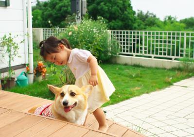 kaisei_0007.jpg