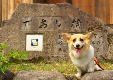 sirakawagou_1001.jpg