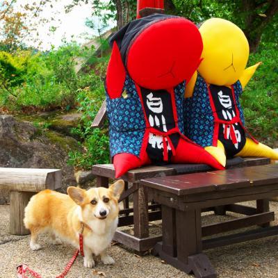 sirakawagou_1056.jpg
