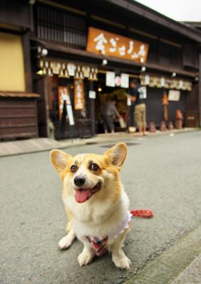 takayama_1006.jpg