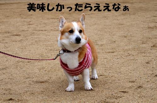 201203_P1010918.jpg