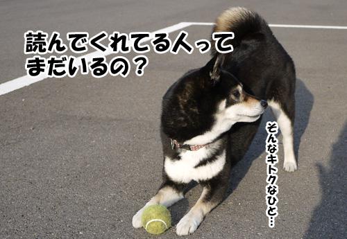 20120430_P1010540.jpg