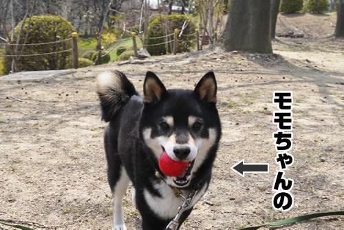 20120503_1020002.jpg