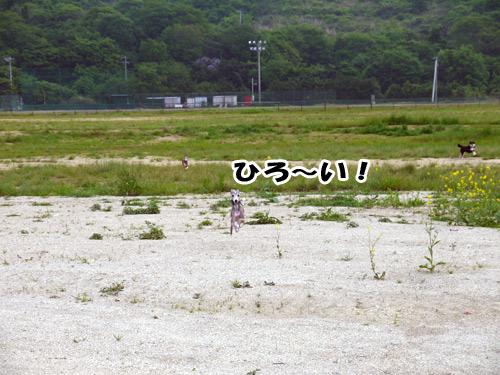 20120507_1020278.jpg