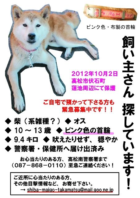 shiba-maigo-takamatsu02.jpg