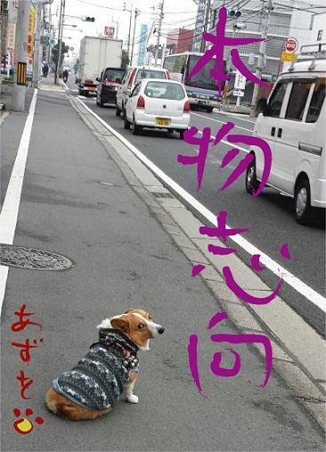20140108-12.jpg