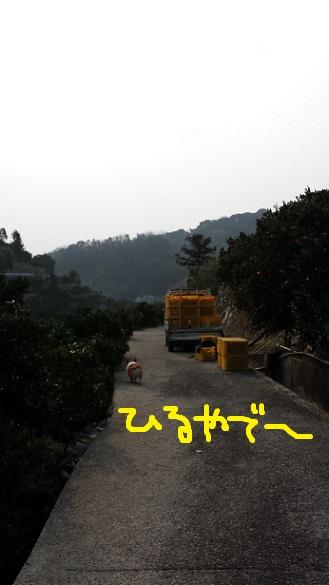 20140118-12.jpg