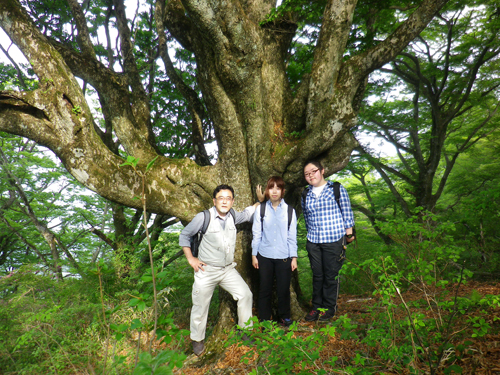 11.5.21ブナ大樹記念撮影2