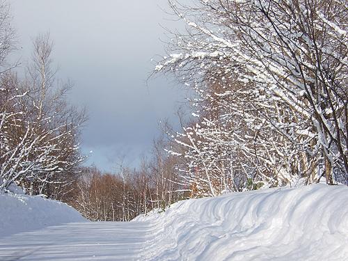 真駒内 雪道