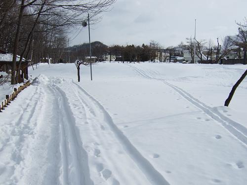 冬の十五島公園 スキーの跡