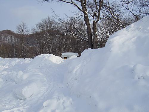 冬の十五島公園 駐車場