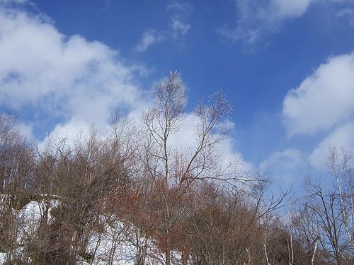 冬に逆戻り 札幌 春の気配
