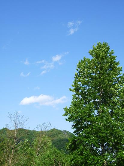 札幌 気持ちの良い空