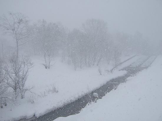 真駒内公園 猛吹雪