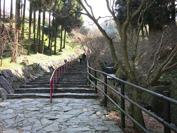 普光寺 参道 石畳の坂