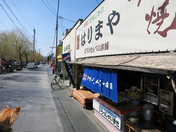 柳川 煎餅や