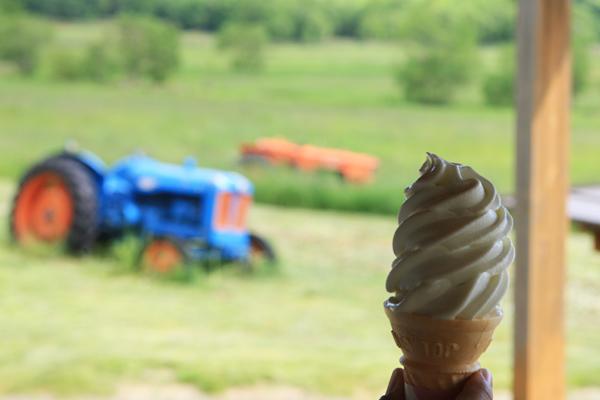 五郎の石の家 ソフトクリーム