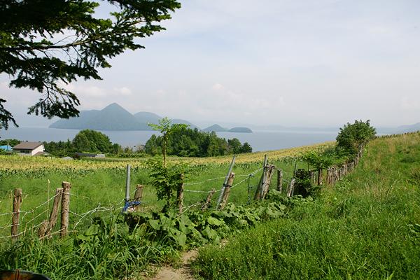 月浦 洞爺湖 畑