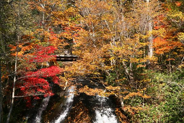 ラルマナイの滝 紅葉 下から