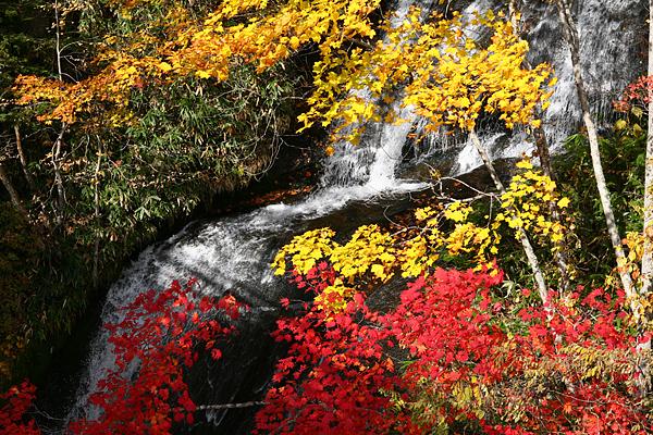 三段の滝 紅葉
