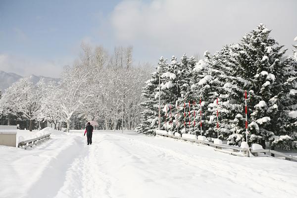 真駒内公園 雪景色