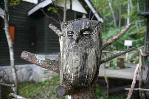 富良野 森の時計 木彫り ふくろう