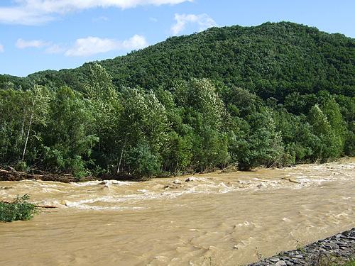 豊平川 激流 洪水