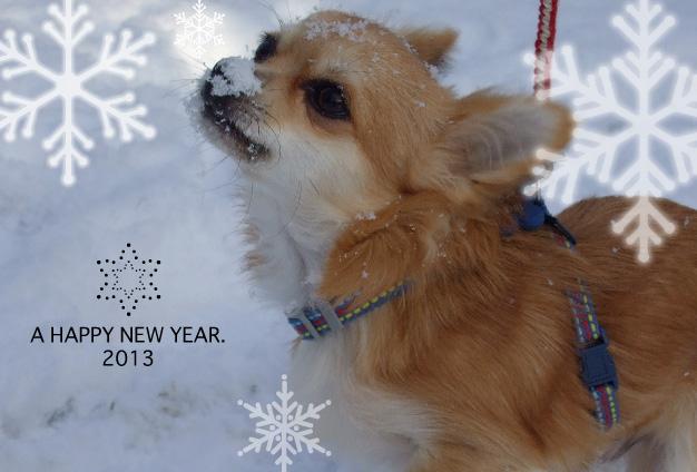 happy new year 茶太郎 2013
