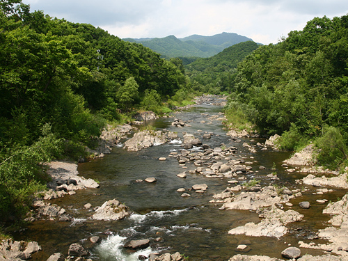 十五島公園 豊平川 吊り橋 いつも
