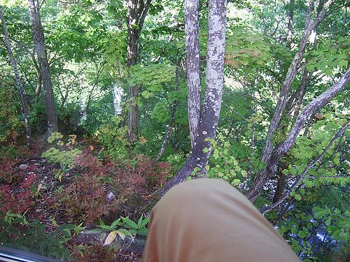 カフェ 崖の上 窓から