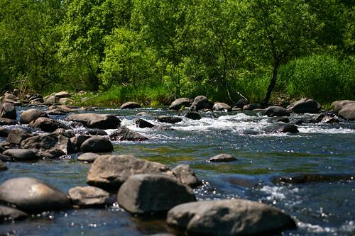 十五島公園 川面