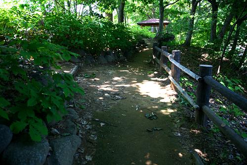 十五島公園 木陰の道