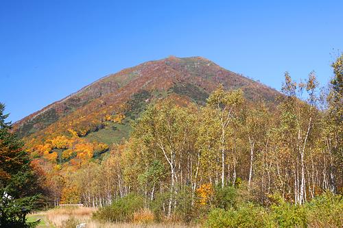 ニセコ 紅葉の山