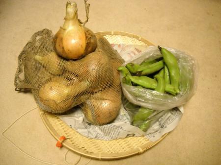 無農薬野菜20100522063604