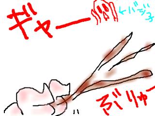 snap_bajiko_201411015285.jpg