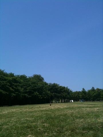 IMG_1432.jpg
