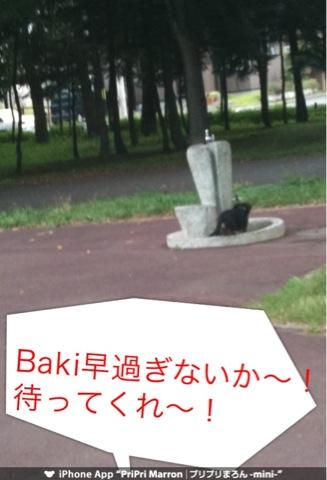 IMG_3319.jpg
