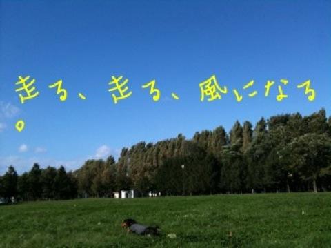 IMG_4343.jpg