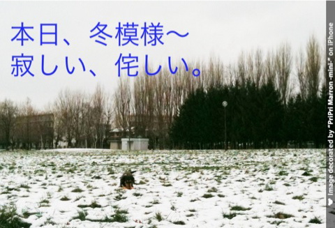IMG_5806.jpg