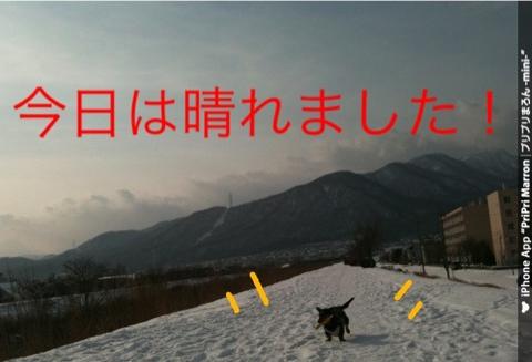 IMG_6008.jpg